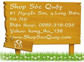 Shop Soc Quay - 81 Nguyen Son, Ha Noi - 0989318036