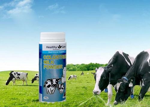 Sữa bò non colostrum healthy care