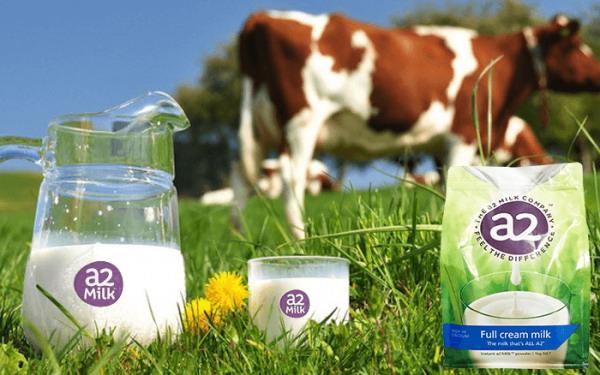 Sữa tươi nguyên kem a2 - túi 1kg